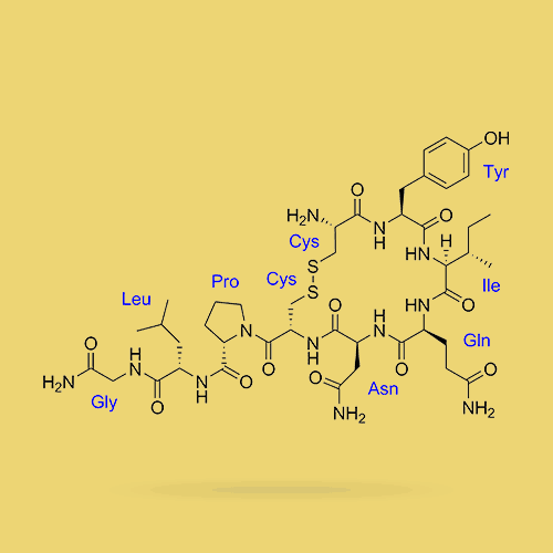 Oxytocin Molecules Representing Hormonal Causes of Premature Ejaculation